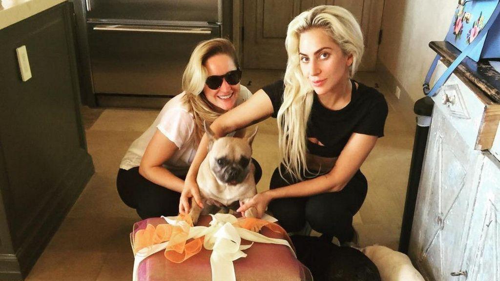 Se busca: Lady Gaga ofrece 500.000 dólares por encontrar a quién robo sus perros y tiroteó a su paseador