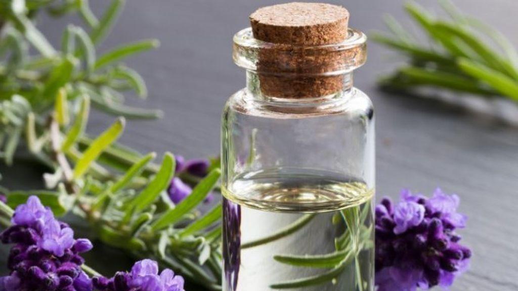 Además, tiene una infinidad de propiedades como antiinflamatorias e hidratantes.