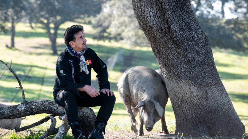 La alimentación y el entorno son claves para el cerdo ibérico