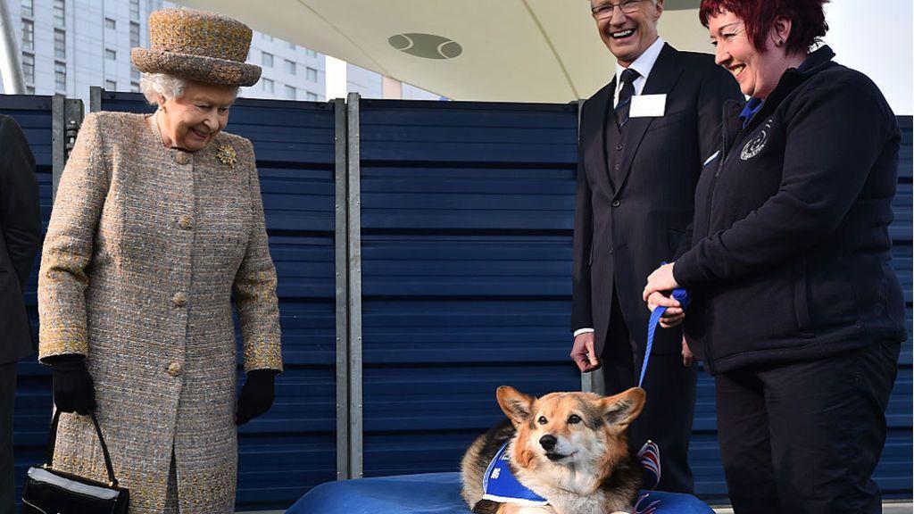 La reina Isabel II recibe dos nuevos cachorros 'corgi' que vivirán en el palacio de Windsor