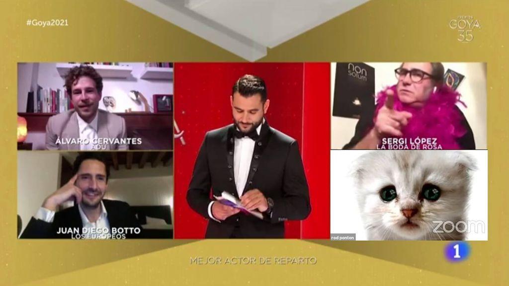 Los mejores memes de la Gala de los Goya 2021, marcada por las videollamadas