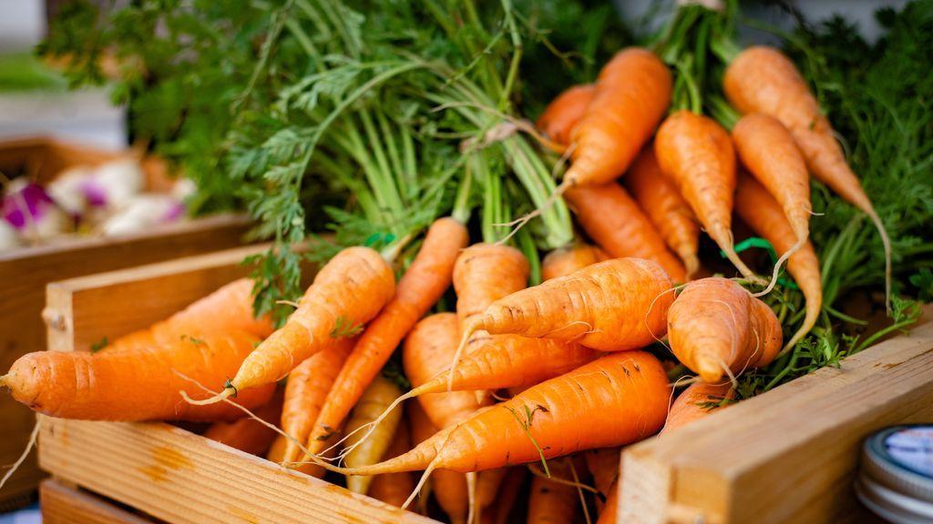 Zanahoria: verduras fáciles de cultivar en casa