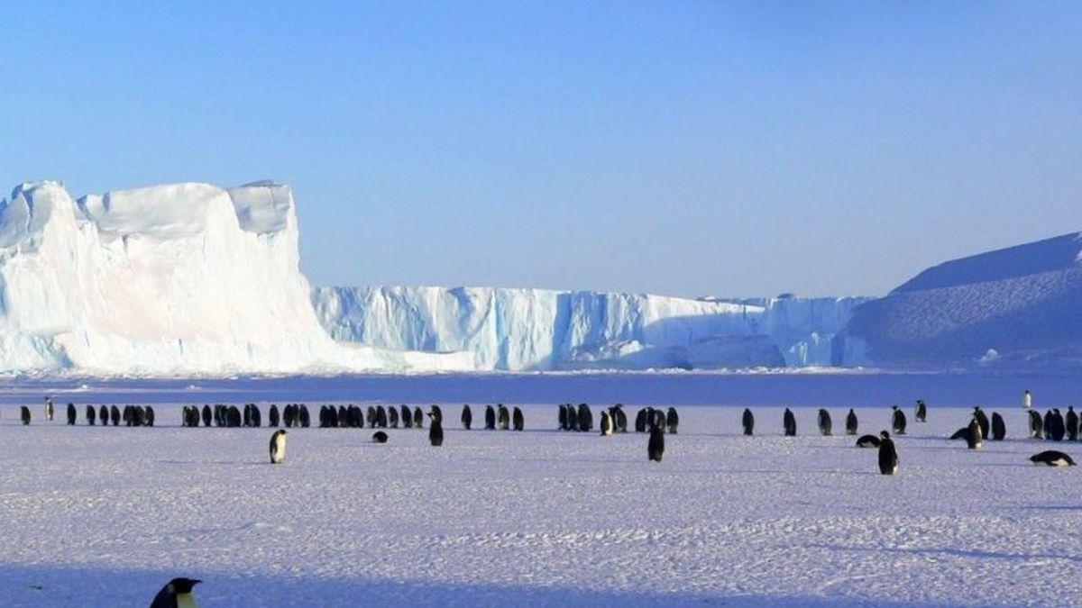 La Antártida esquiva el virus pero no la contaminación