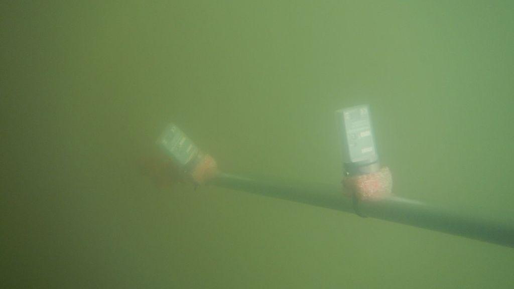 csm_Presse_Coastal_Ocean_Darkening-Prof_Oliver_Zielinski_1_3d073c5fb8