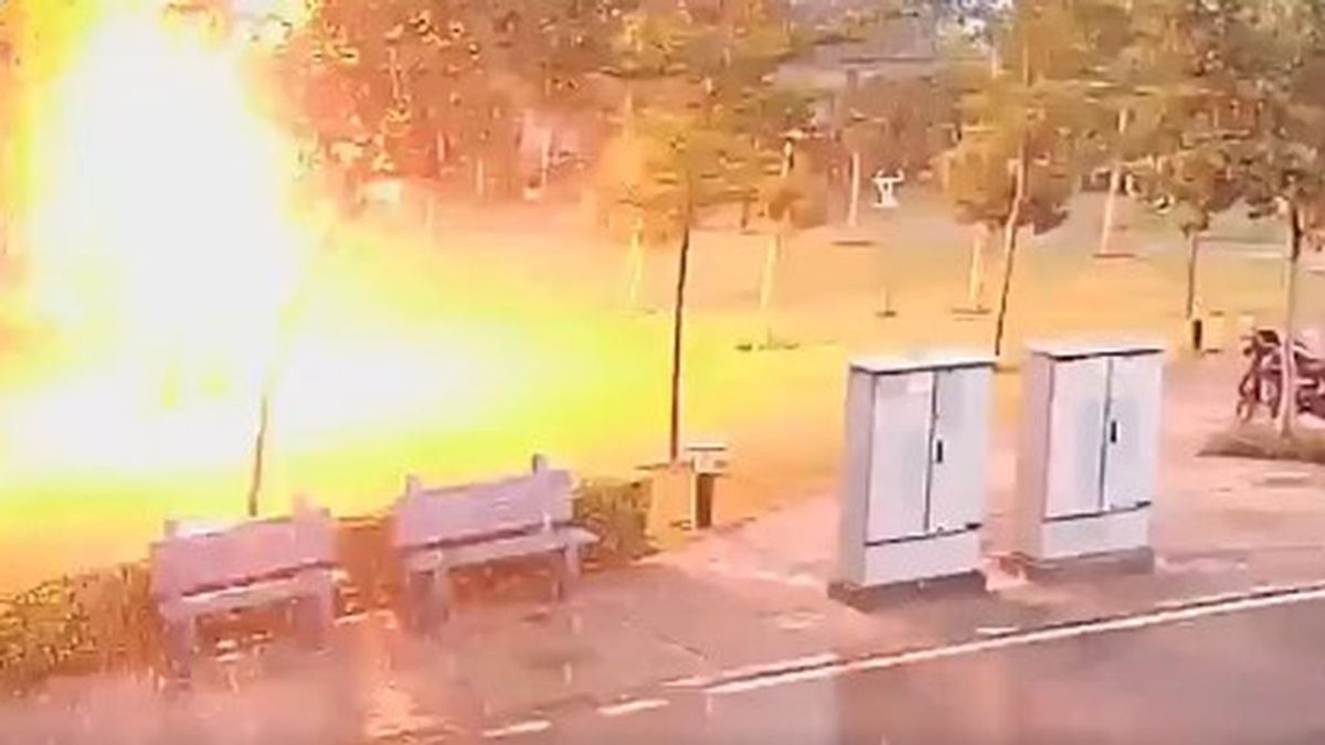 La historia tras el vídeo con el que el 112 nos alerta del peligro de guarecerse de una tormenta bajo un árbol