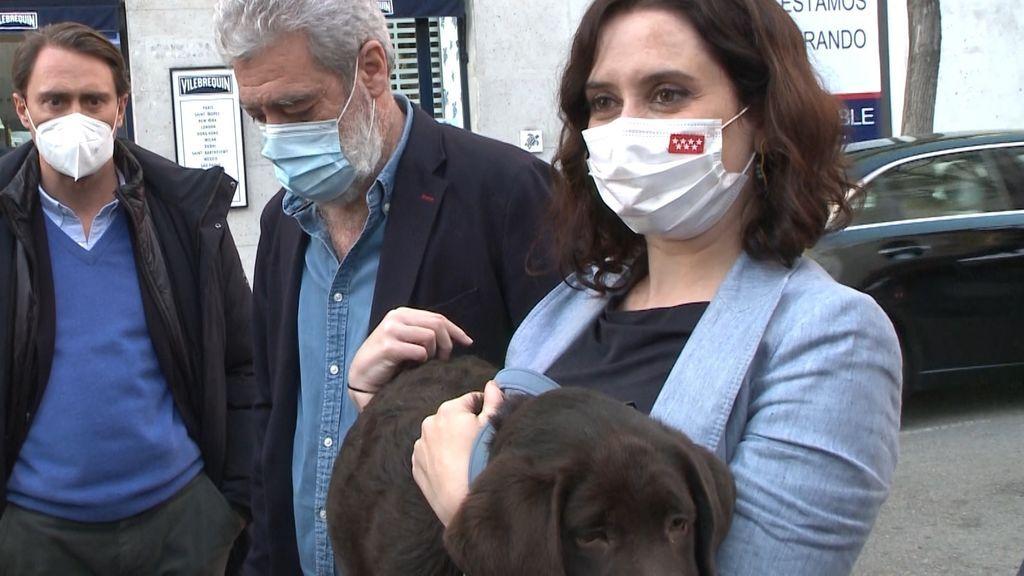 La presidenta de la Comunidad de Madrid, Isabel Díaz Ayuso, atiende a Europa Press con su perro en brazos.