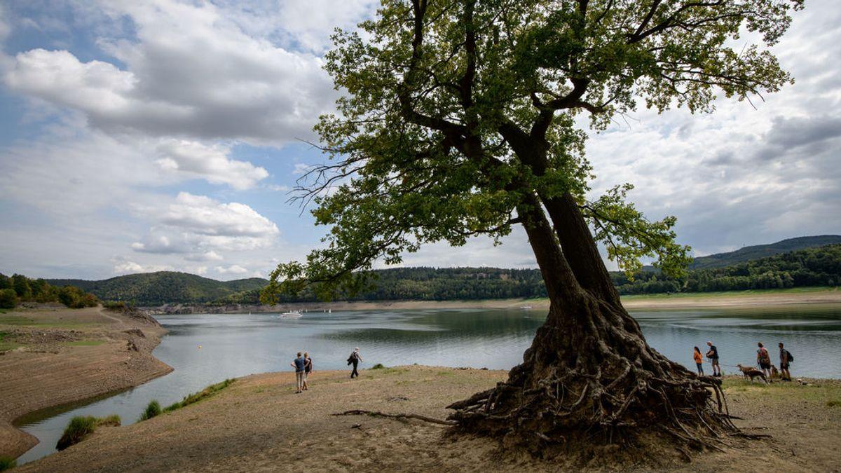 Las sequías de verano en Europa desde 2015 han sido las más graves en más de dos mil años