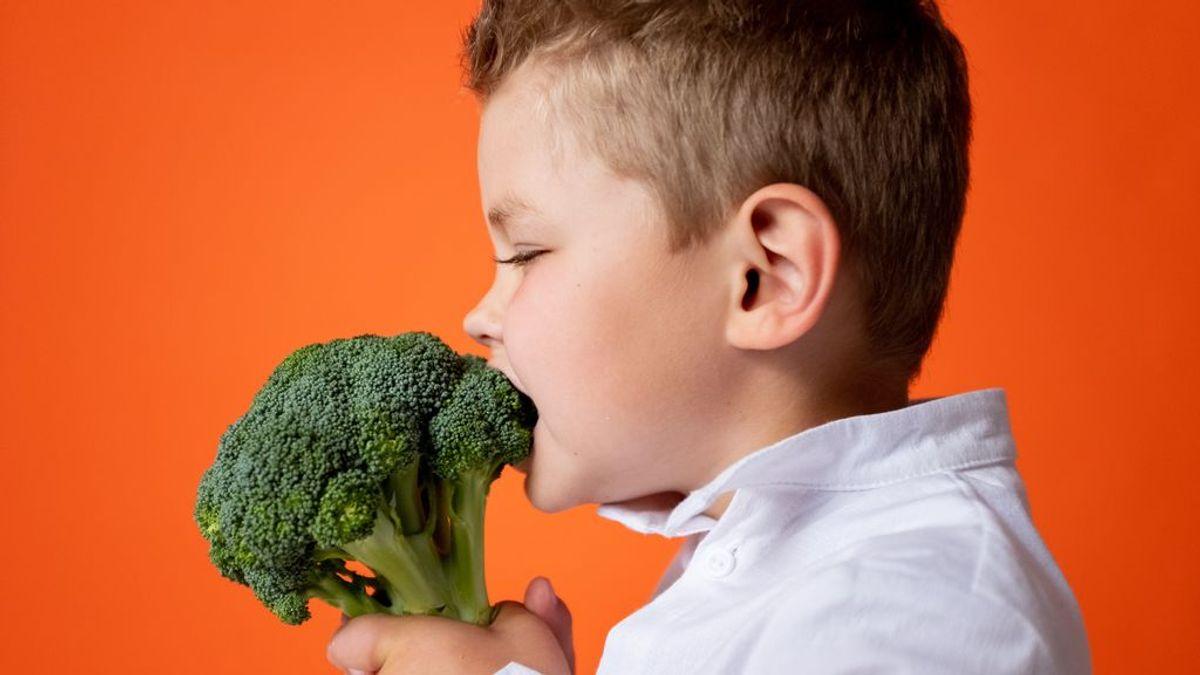 Neofobia gustativa: analizan los mecanismos cerebrales implicados en la resistencia a probar sabores nuevos