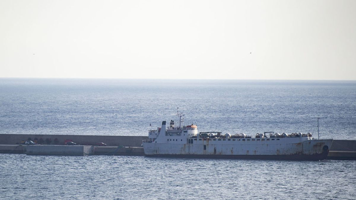El buque Elbeik obligado a atracar en Cartagena para inspeccionar sus terneros