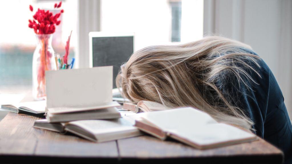 Alondra mañanera o un búho nocturno: el test que revela en qué parte del día eres más activo para rendir mejor