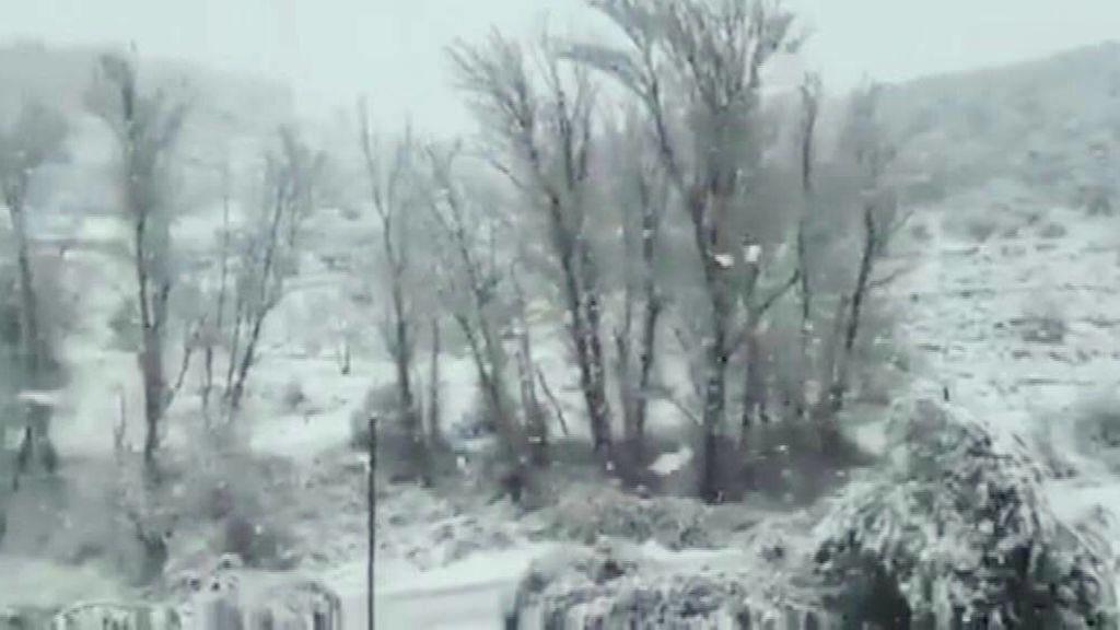 Temporal de nieve en Valencia
