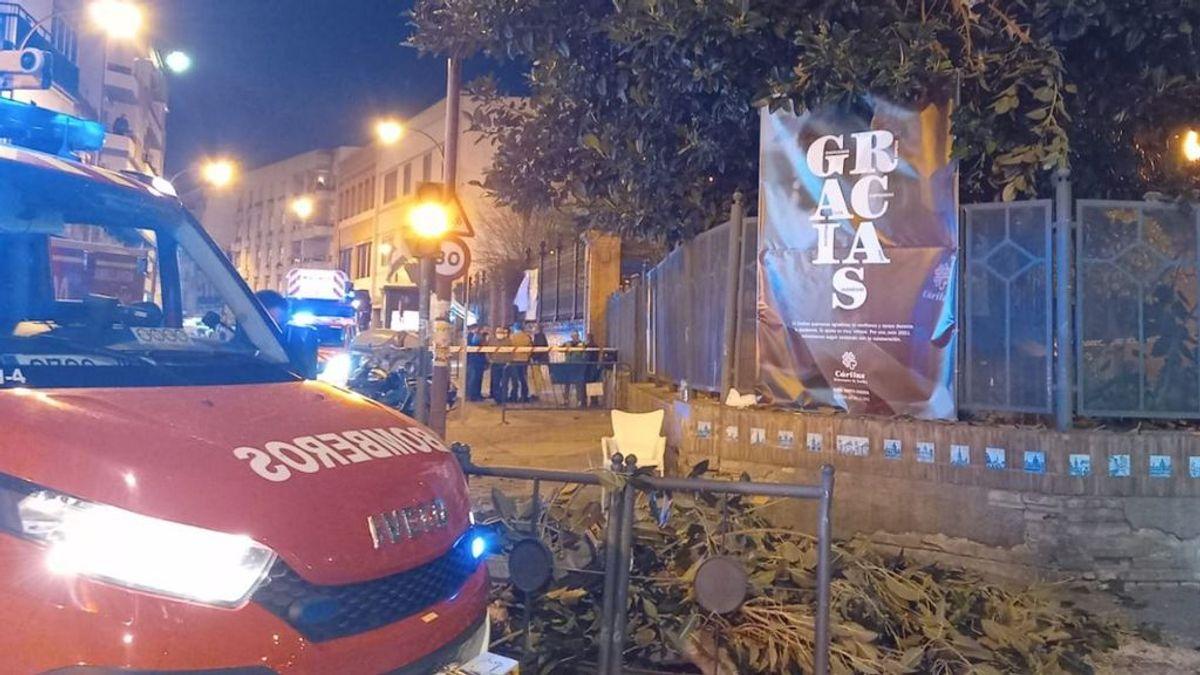 Tres mujeres, heridas graves al caerles un árbol en el barrio de Triana de Sevilla