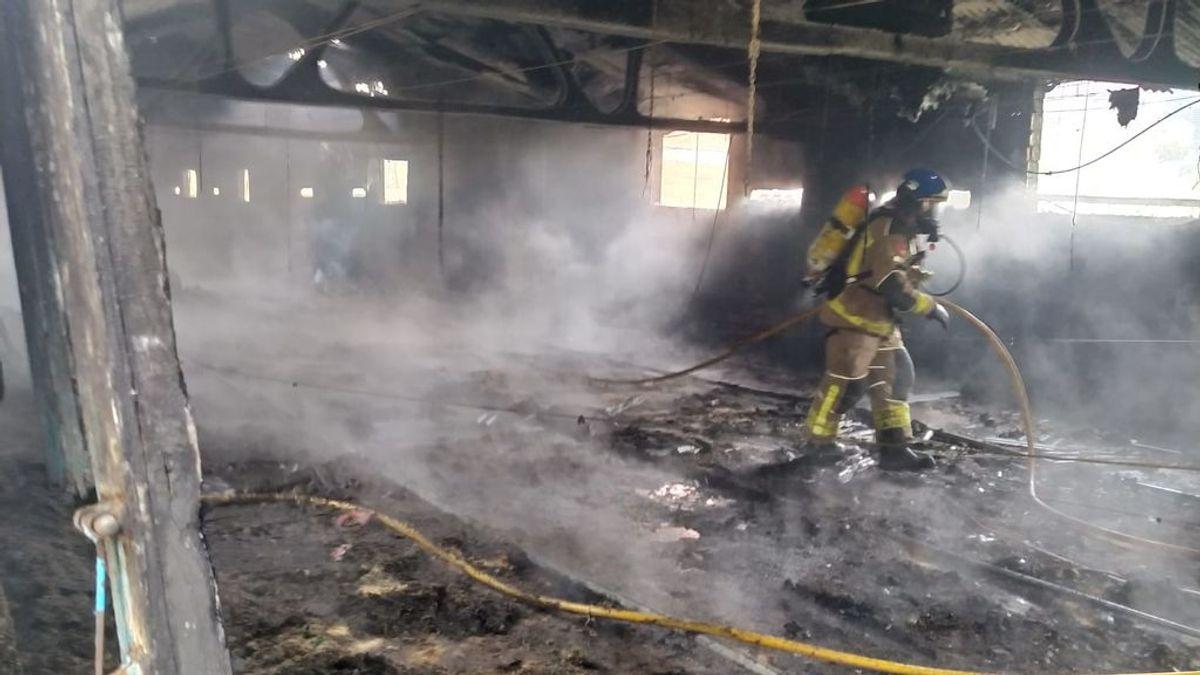 Mueren 7.000 pollos en el incendio de una granja en Barcelona provocado presuntamente por una estufa