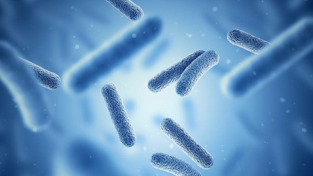 Encuentran bacterias bajo el océano que son invisibles a nuestro sistema inmunológico