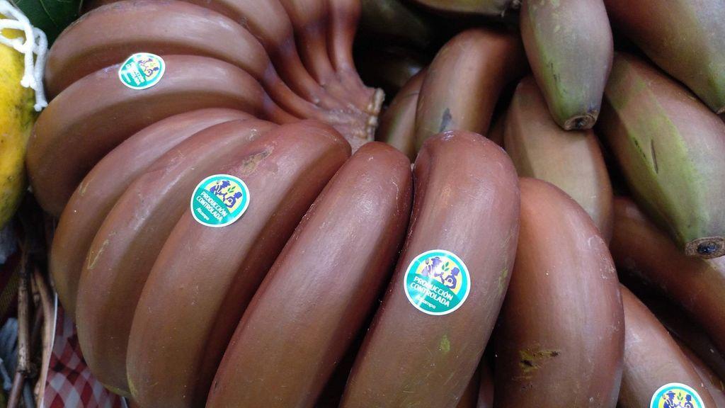 El plátano rojo de Canarias: beneficios de la nueva variante del plátano de toda la vida