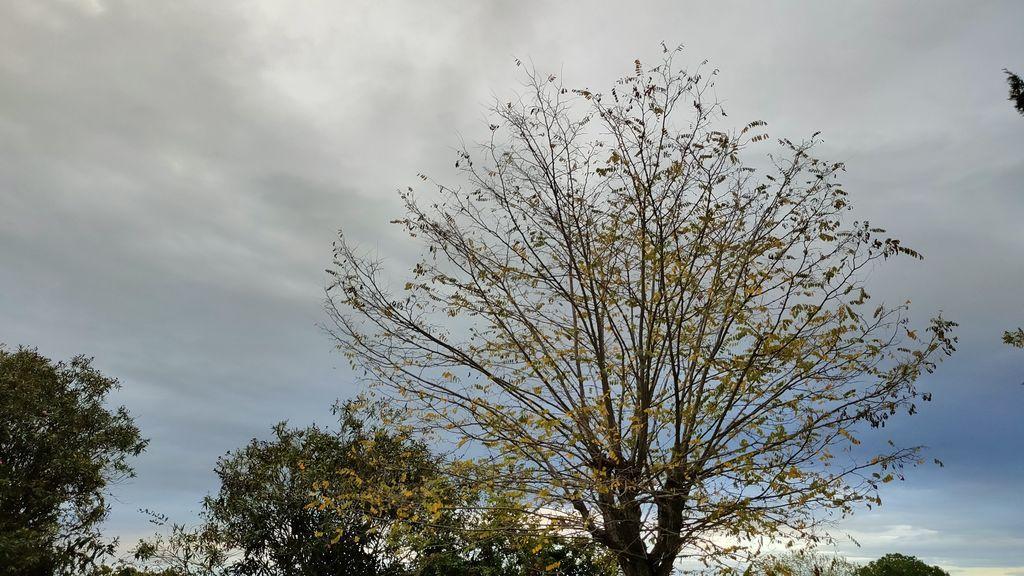 Previsión del tiempo en Semana Santa: inestabilidad, lluvias generalizadas y descenso de temperaturas