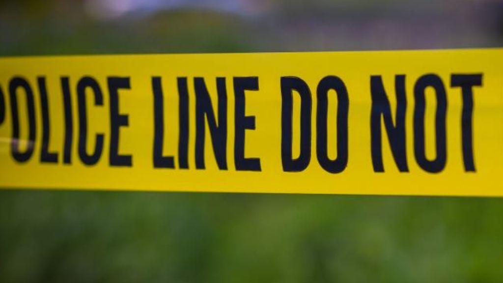 Un joven mata a su madre y su tío en Los Ángeles: los compañeros de ella lo vieron todo por Zoom