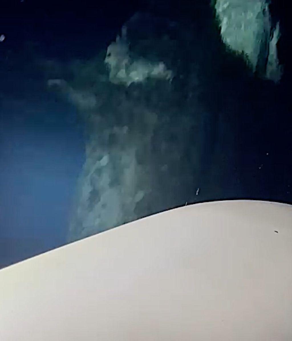 Una orca junto al timón de una embarcación
