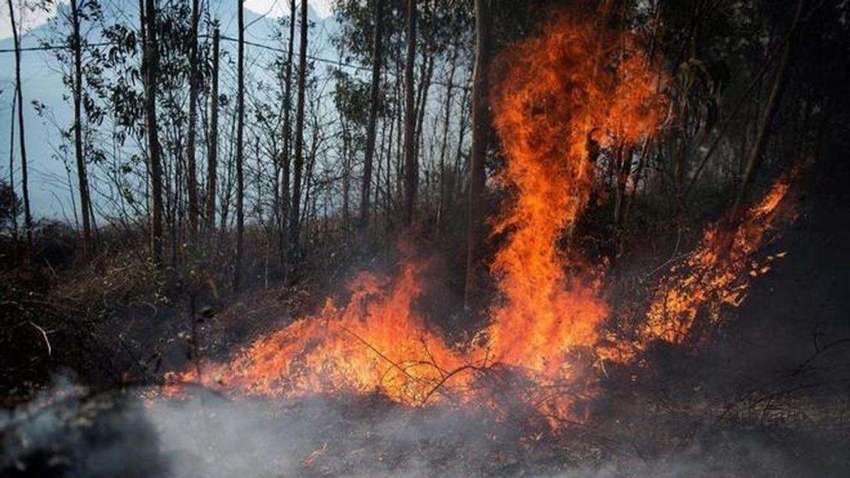 EuropaPress_3575254_incendio_forestal_cantabria