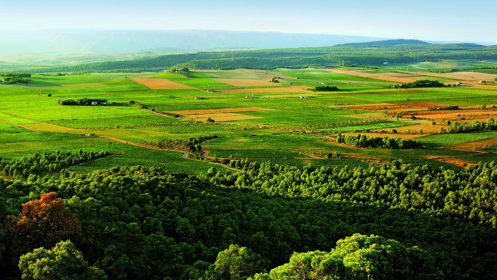 'Terres dels Alforins', paraje conocido tambien como la Toscana valenciana
