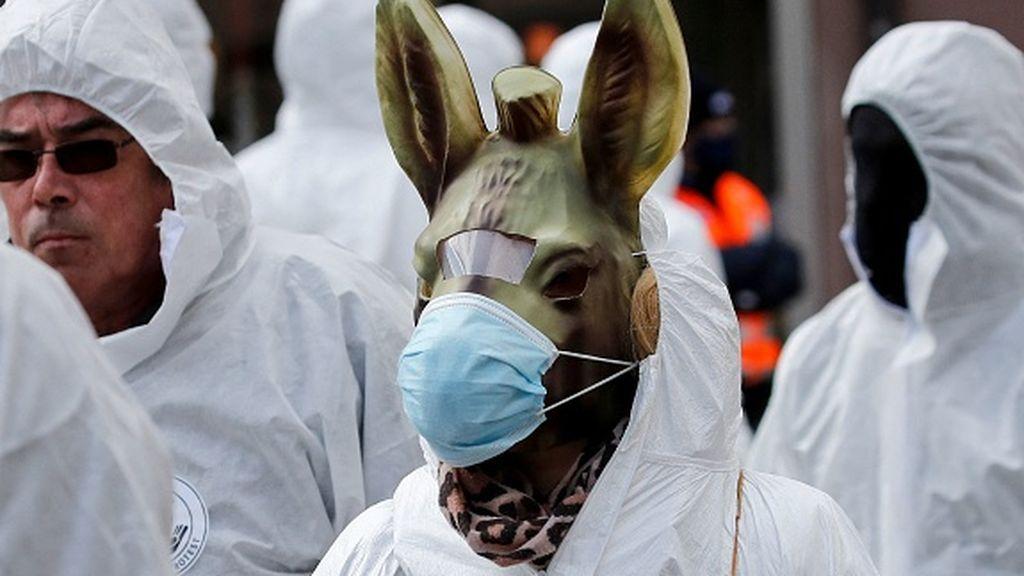 Numerosos altercados en una manifestación contra las restricciones del coronavirus en Suiza