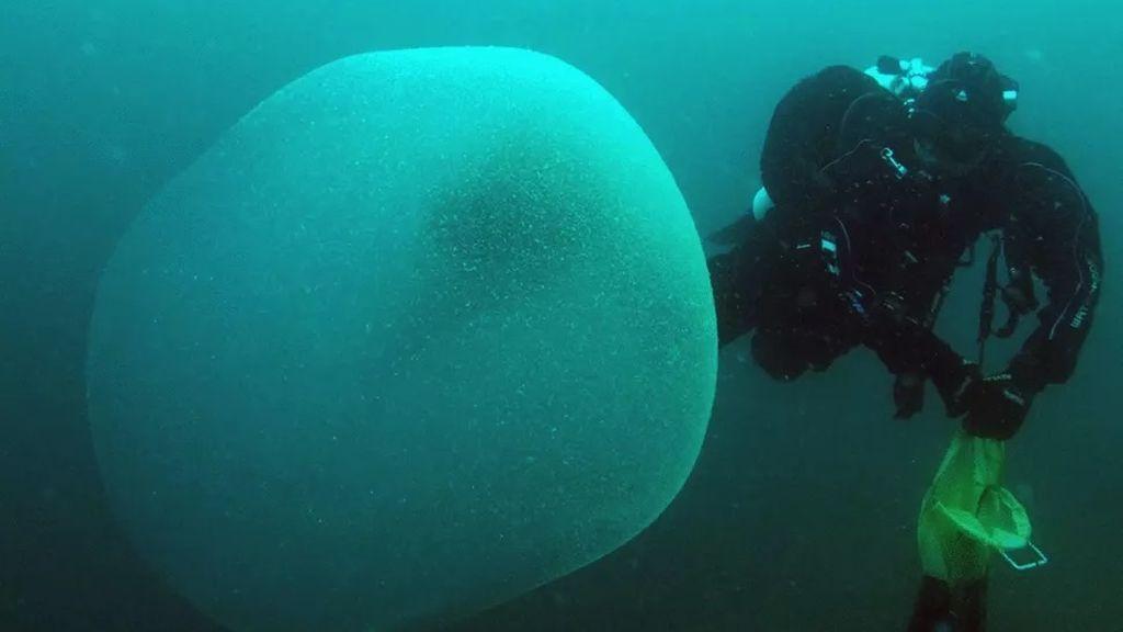 Misterio resuelto: un estudio descubre que estos 'sacos' gelatinosos contienen miles de huevos de calamar