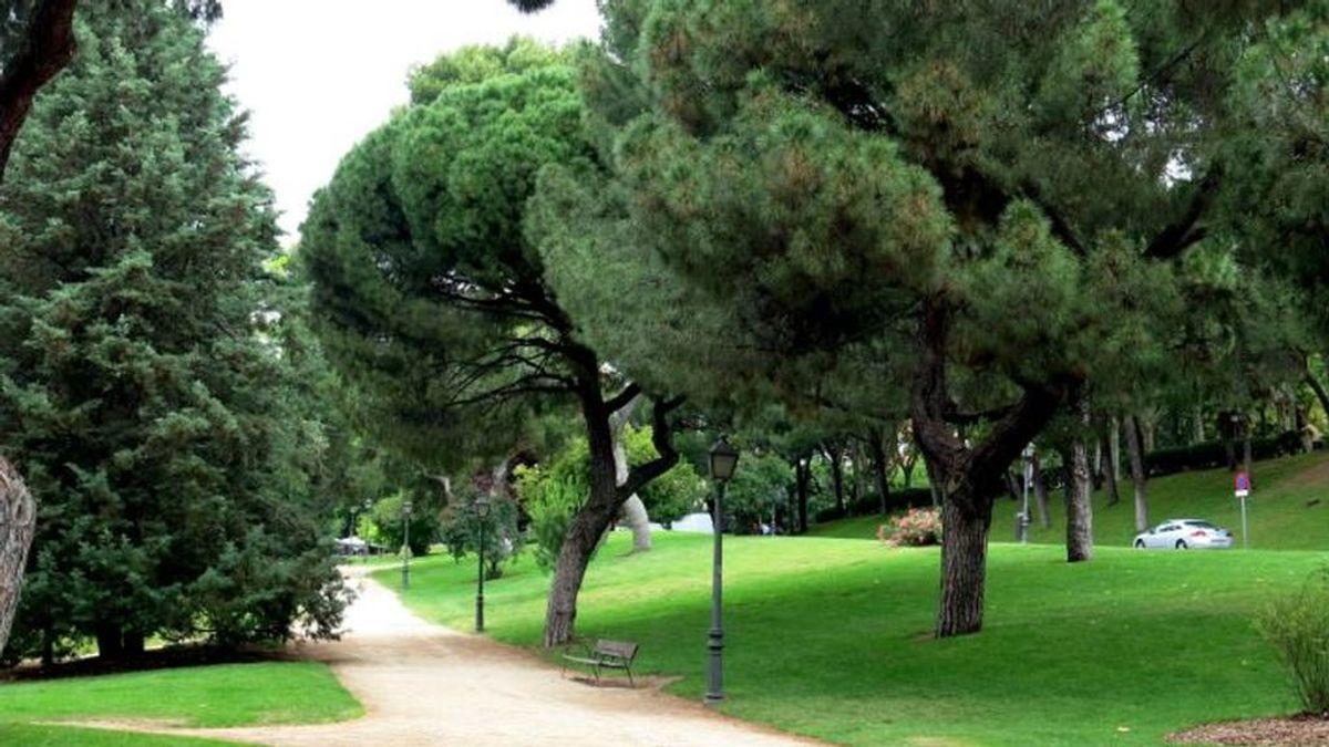 Trece detenidos por abusar sexualmente de una menor en el Parque del Oeste de Madrid