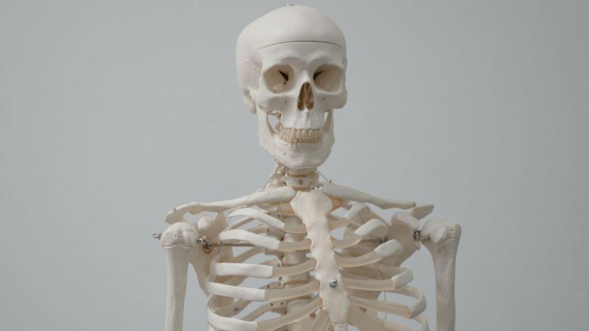 Salud ósea: cómo cuidar tus huesos