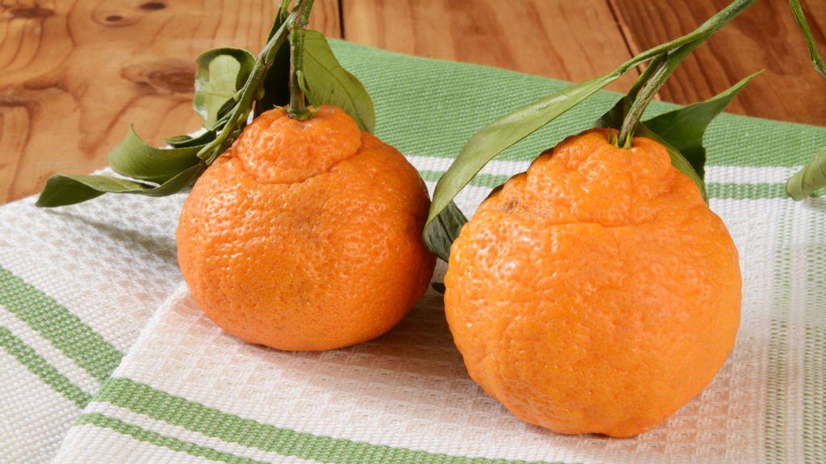 La naranja fea que ha conquistado al mundo y que en España ya está en cuarentena para poderse comercializar