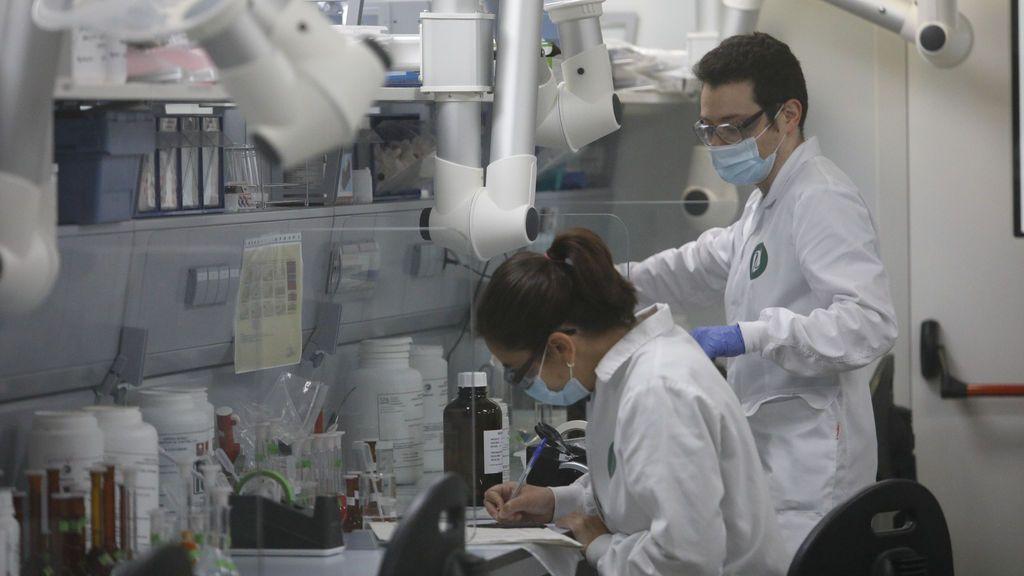 Varios trabajadores en el laboratorio de la fábrica de Reig Jofre, en Barcelona