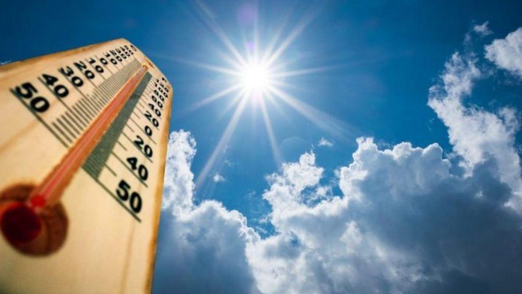 """Del invierno al verano en 24 horas:  """"Vivimos una montaña rusa de temperaturas"""""""