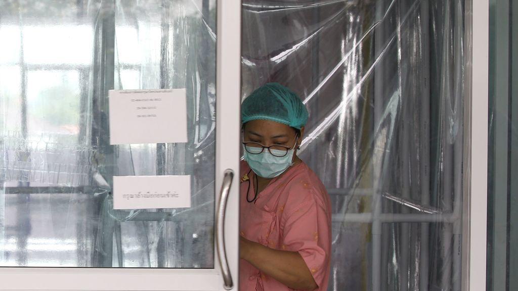 """Existen 1,7 millones de virus """"no descubiertos"""" que podrían tener la capacidad de infectar a las personas"""