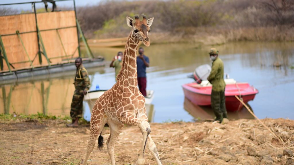 Five-months-old-little-Noelle-getting-of-the-barge-on-the-mainland-of-Ruko-Community-Conservancy-Baringo-Kenya-3-scaled