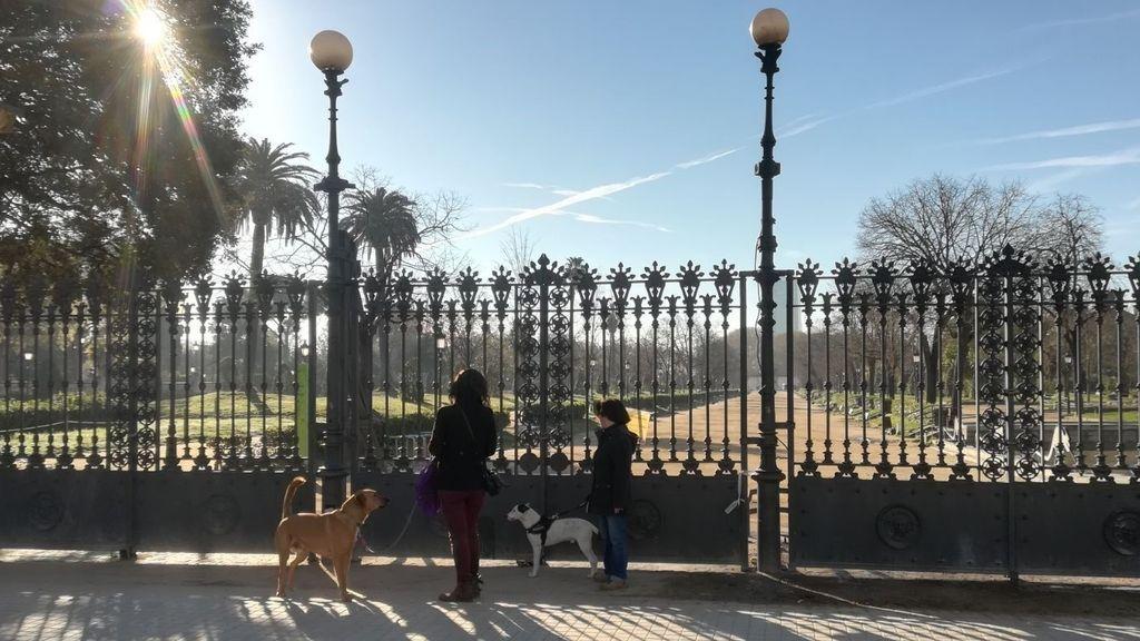 ¡Se despejan los cielos! El lunes se impondrá el sol en prácticamente toda España