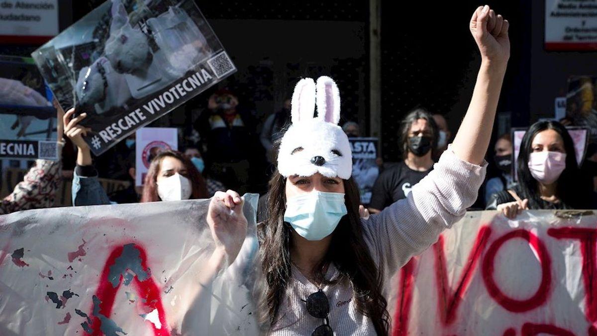 Decenas de personas piden en Madrid la liberación de los animales de Vivotecnia