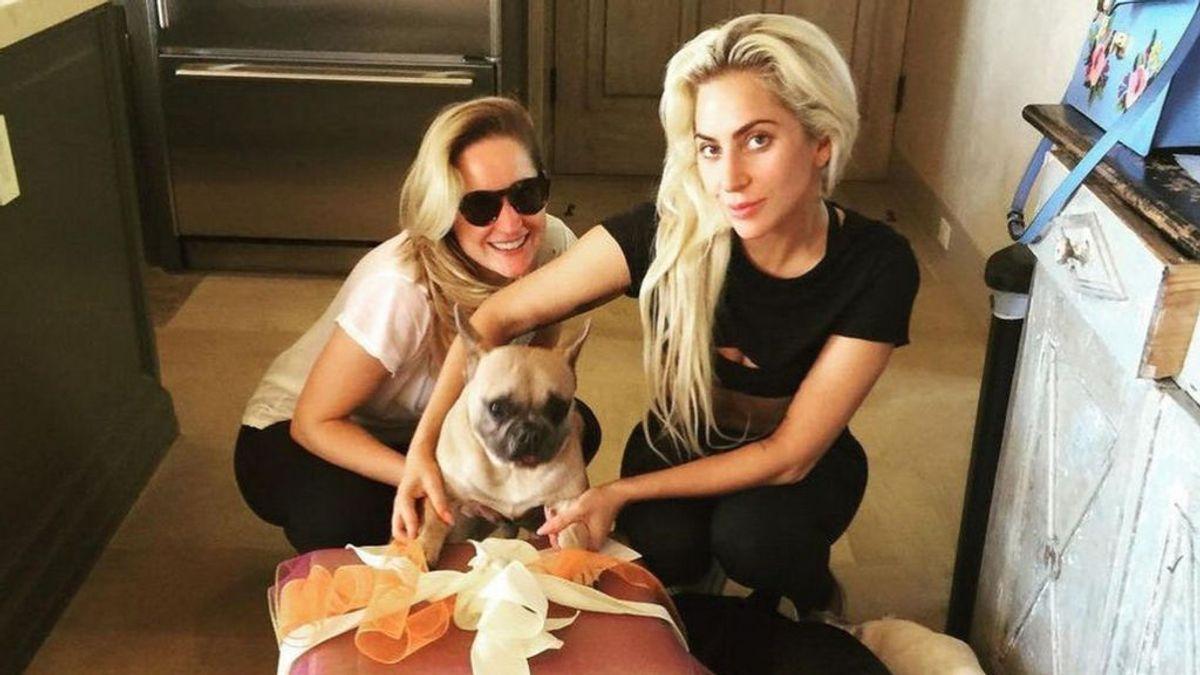 Cinco detenidos como presuntos autores del secuestro de los perros de Lady Gaga