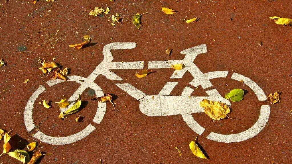 EuropaPress_3524050_210118_np_coslada_adhiere_red_ciudades_bicicleta