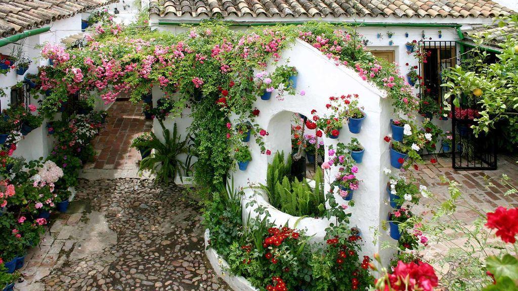 El centenario de la fiesta de los Patios de Córdoba adaptado a la pandemia