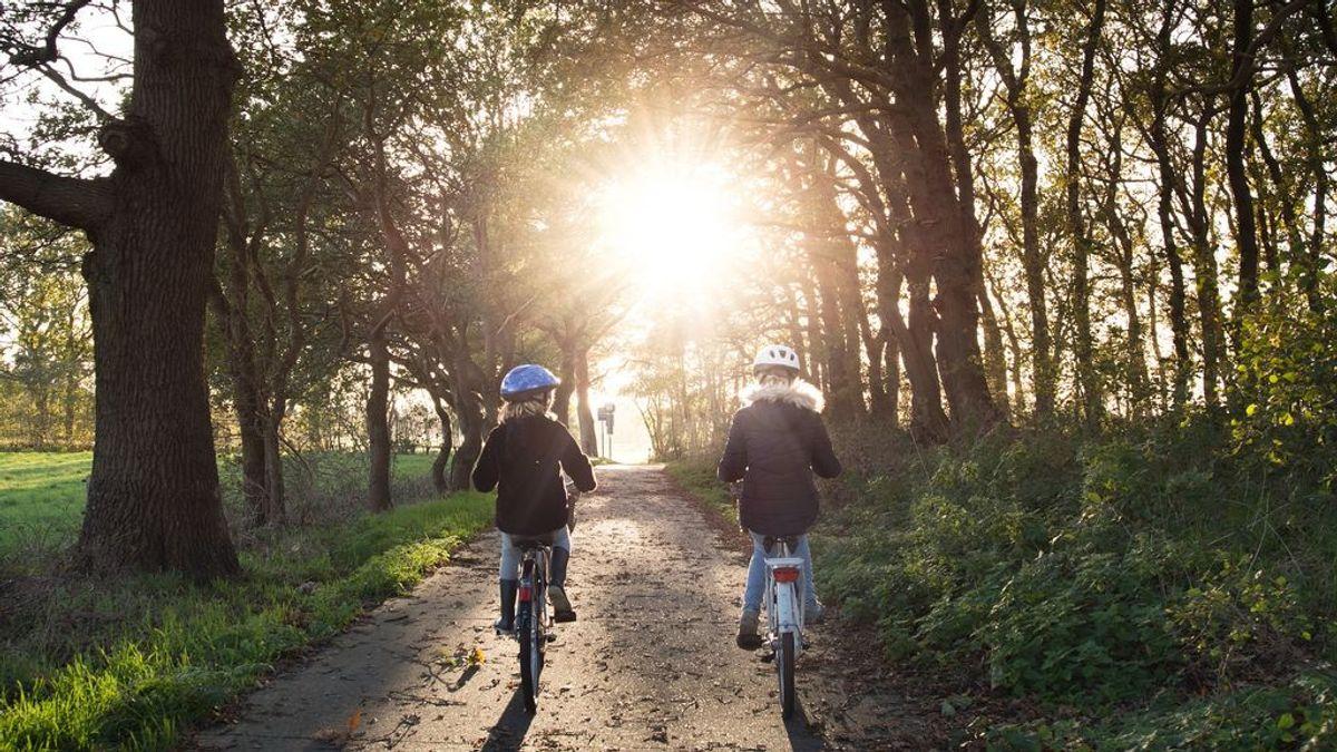 Carnet para ir en bici: ¿será necesario?