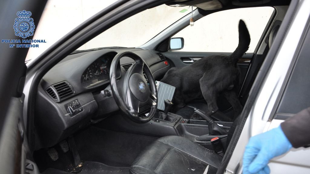 EuropaPress_3683586_guia_canino_policia_nacional_inspecciona_coche