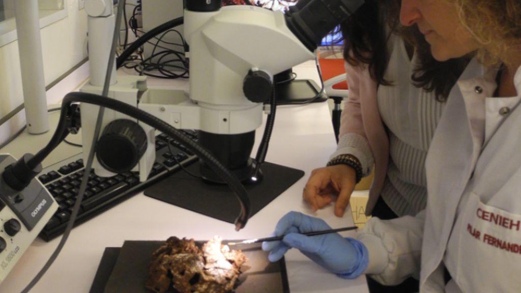 Analizando los restos de Mtoto, el niño enterrado más antiguo de la historia