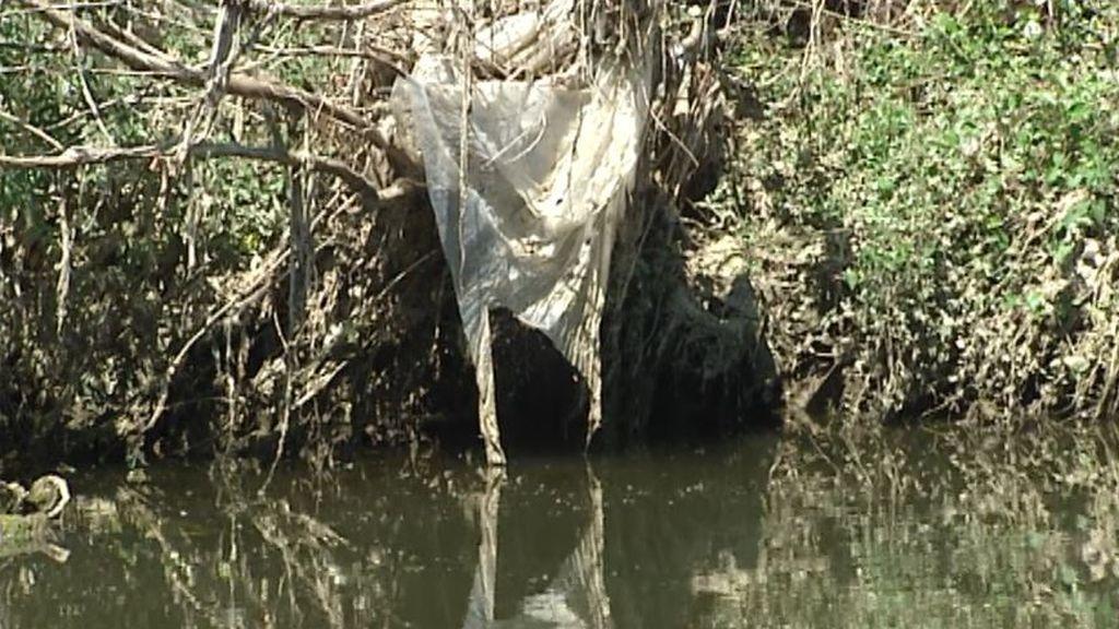 El caudal bajo del Jarama es prácticamente agua de vertidos