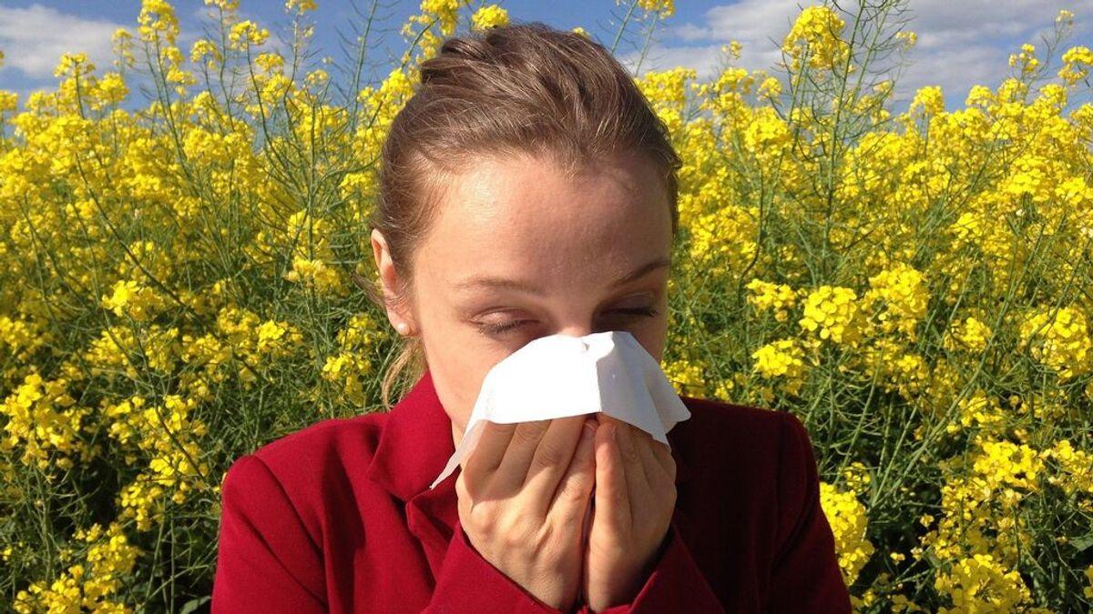 Los medicamentos que se usan habitualmente para tratar la alergia