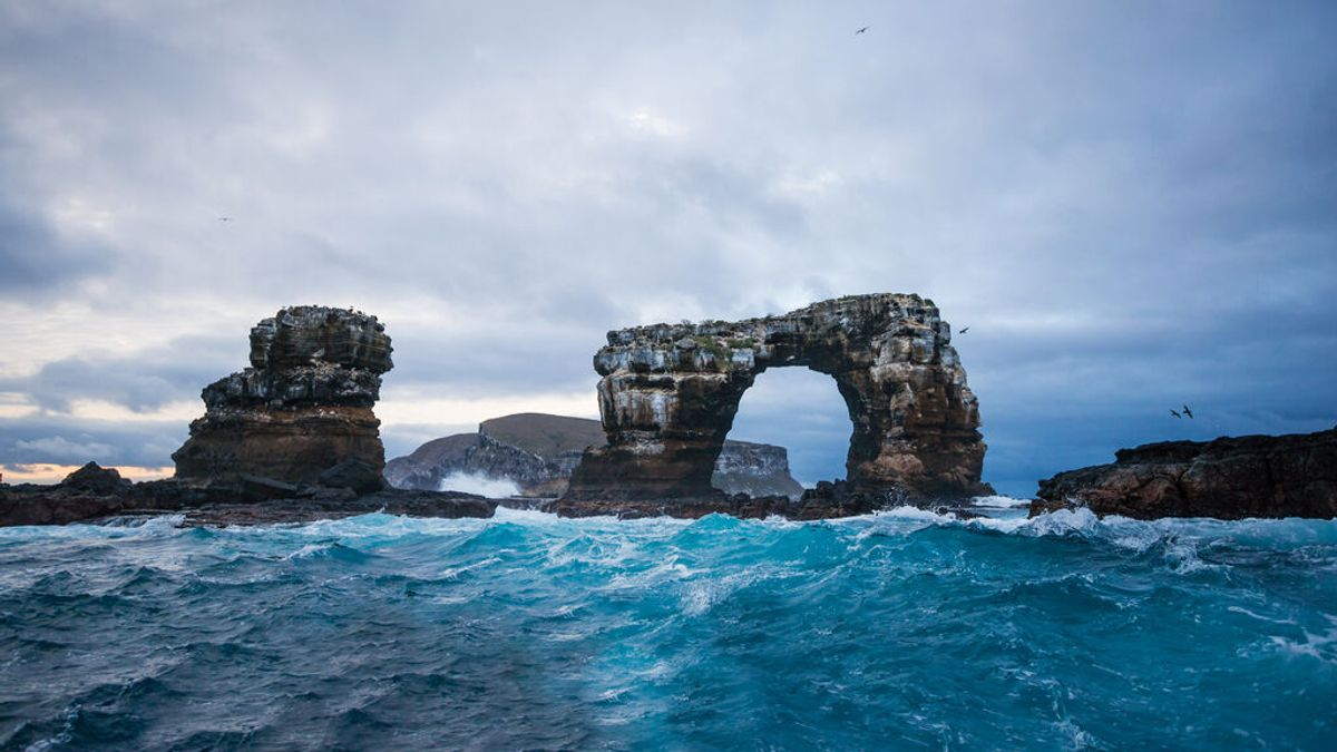 El arco de Darwin en Gálapagos colapsa por la erosión