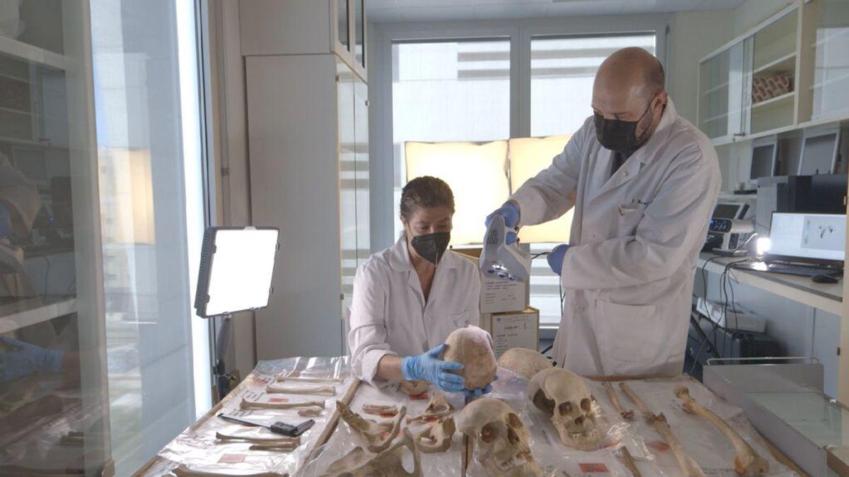 En cinco meses se podría confirmar el origen de Cristóbal Colón a través de análisis de ADN