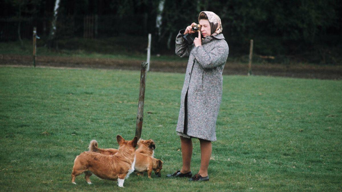 """Isabel II, """"devastada"""" por la muerte de uno de sus perros"""