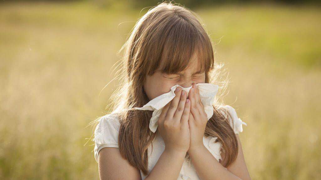 ¡Se disparan los niveles de polen! Alerta roja por el olivo y las gramíneas