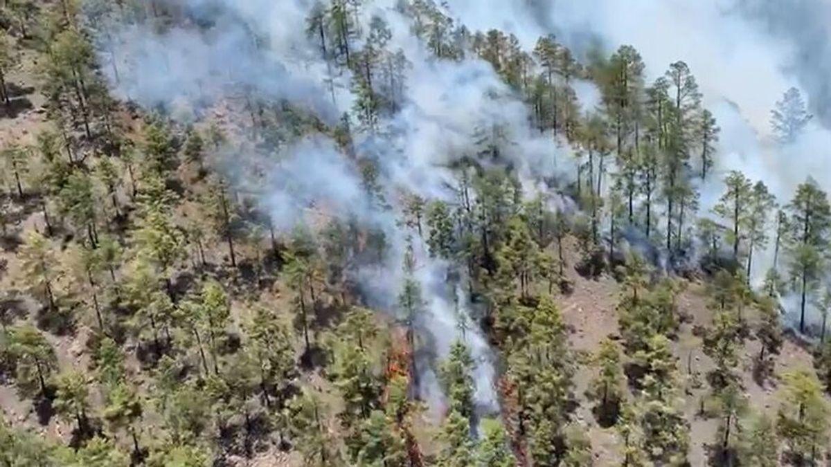 El fuerte viento dificulta el control del incendio que afecta a 300 hectáreas en Tenerife