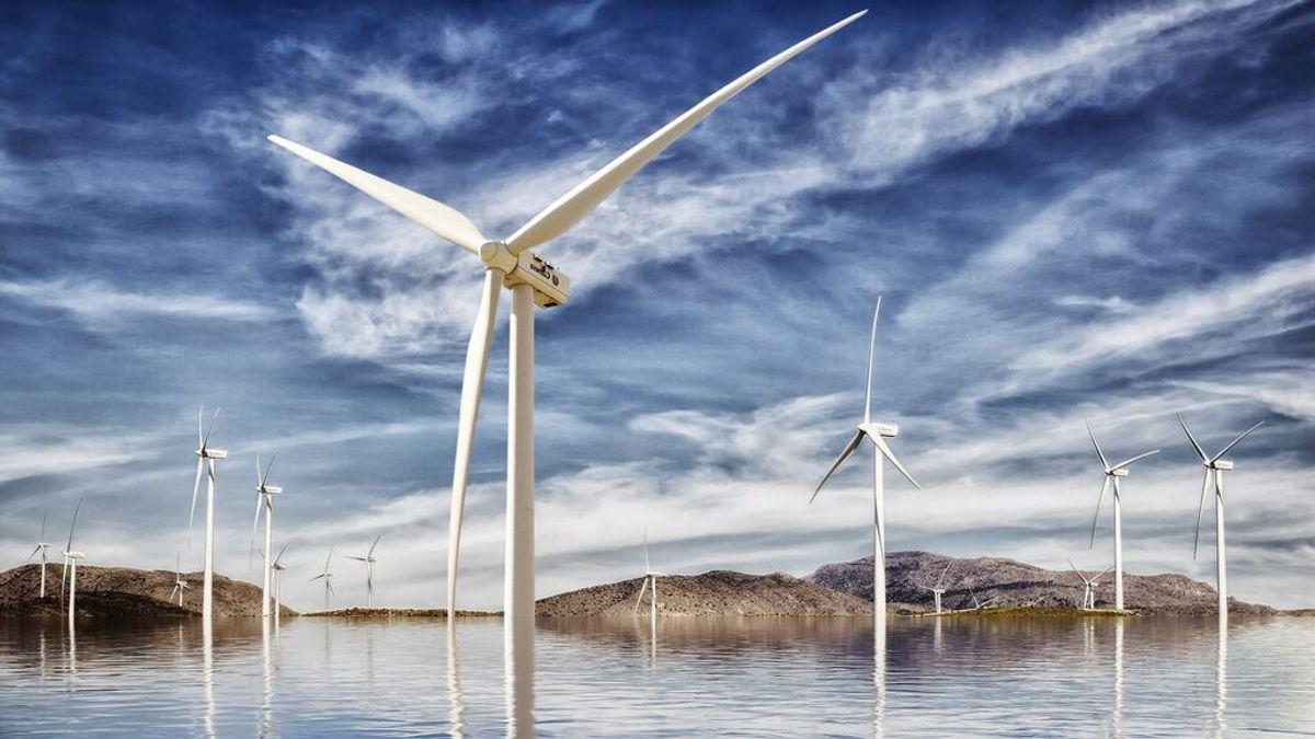 ¿Cuáles son los 10 empleos ecológicos más demandados y mejor pagados?