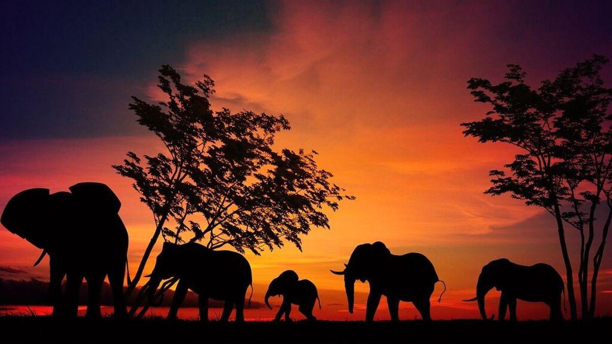 Las maravillas naturales de África